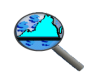 Data Point Logo - Magnifying glass over the state of Virginia